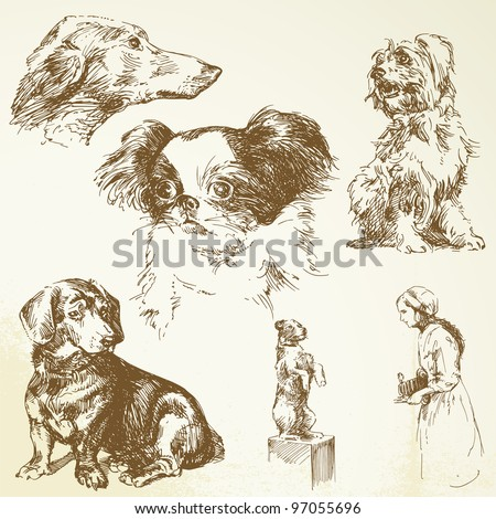 dogs - hand drawn set - stock vector