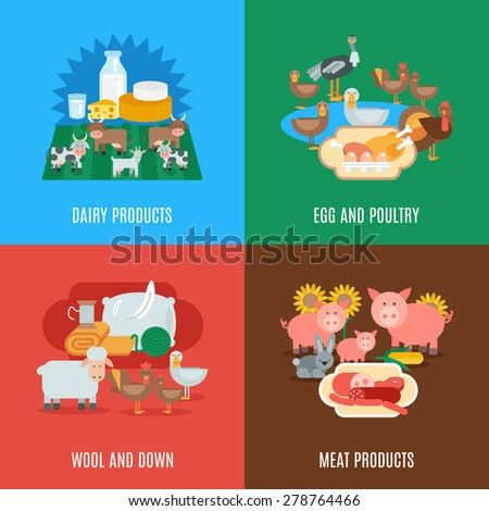 Domestic animal design concept set with dairy meat products eggs wool down and poultry flat icons isolated vector illustration - stock vector