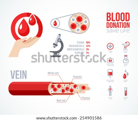 Donor infographics Icons Set. Blood Donation Lifesaving and Hospital Assistance. Vector illustration. World Blood Donor Day. Blood Drop. Medical Design Elements. Human Vein Scheme. - stock vector