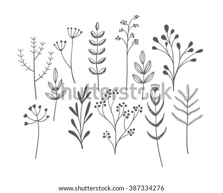 Doodle grass set. Cute vector collection of hand drawn meadow plants.