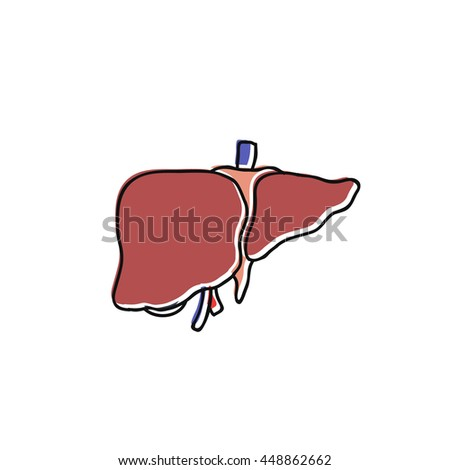 doodle icon. human liver. vector illustration