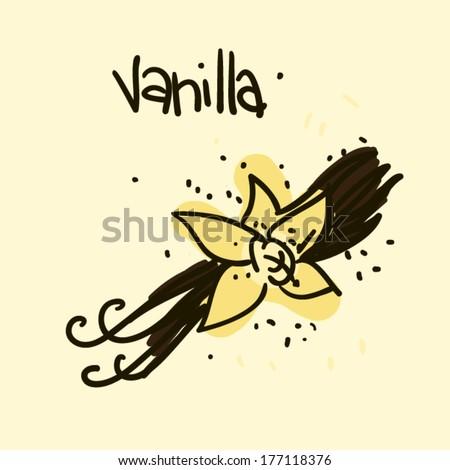 Doodle sketchy simple vector food illustration: vanilla - stock vector