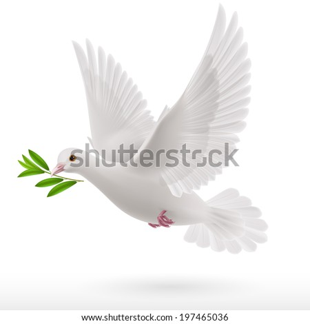 dove flying with a green twig in its beak - stock vector