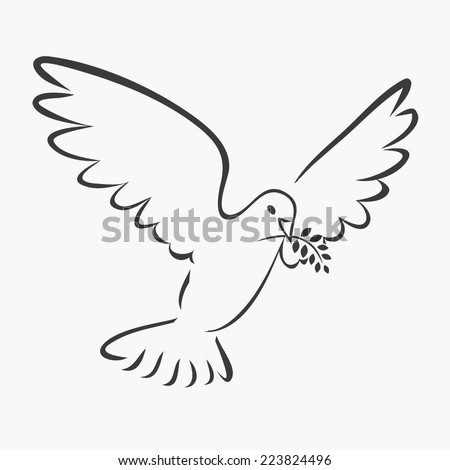 DOVE WITH OLIVE BRANCH outline illustration vector  - stock vector
