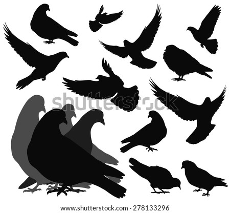 Doves silhouettes collection.  Vector EPS 8