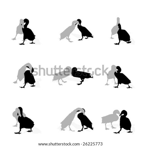 drakes fighting, collection for designers - stock vector