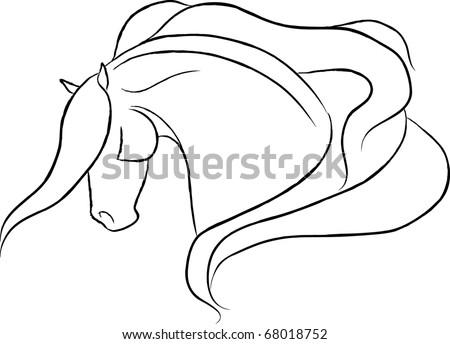 Dramatic Horse Head Vector - stock vector