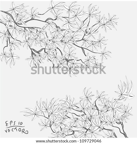 Drawing branch with leaves hanging from the tree, EPS10 Vector background - stock vector