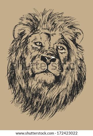 drawing lion's head - vector illustration - stock vector