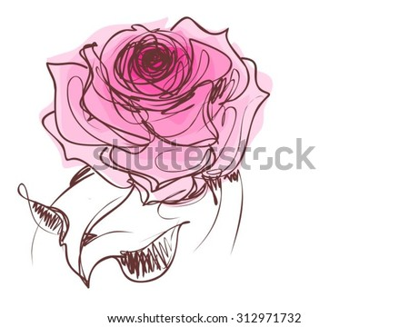Drawing vector graphics with floral patterns with roses for design. Floral flower natural design. Graphic, sketch drawing. rose  - stock vector