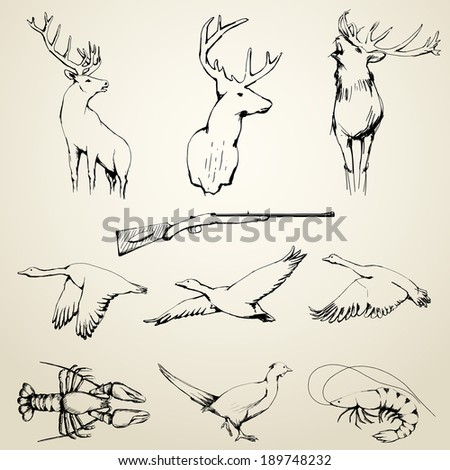 Drawn Wild Animals Collection | editable EPS 10 vector - stock vector