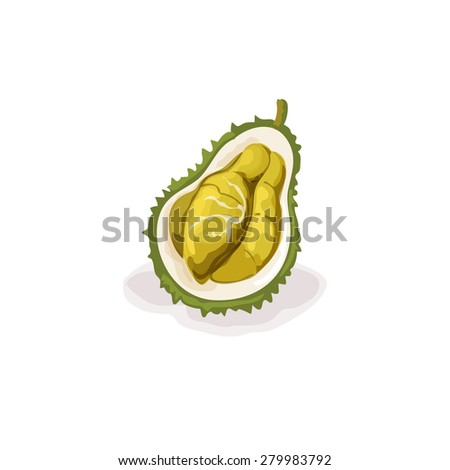 durian fruit outline The edible fruits of 8 species of the southeast asian genus durio known commonly as durian vary considerably in terms of size, shape, pulp/fruit ratio, and fla .