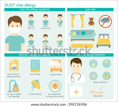 Dust mite allergy infographic: information, symptoms, management, and treatment. Vector illustration  - stock vector
