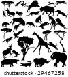 Dynamic struggle of African animals - stock vector
