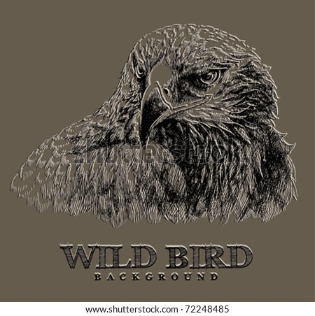 Eagle grunge illustration - great for t-shirts and patriotic designs - stock vector