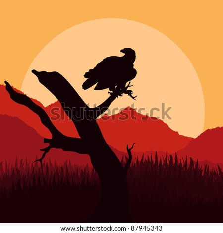 Eagle hunting in wild nature landscape illustration