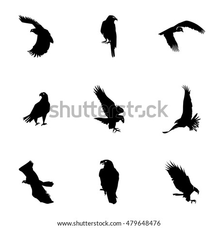 White Eagle Stock Images, Royalty-Free Images & Vectors ...