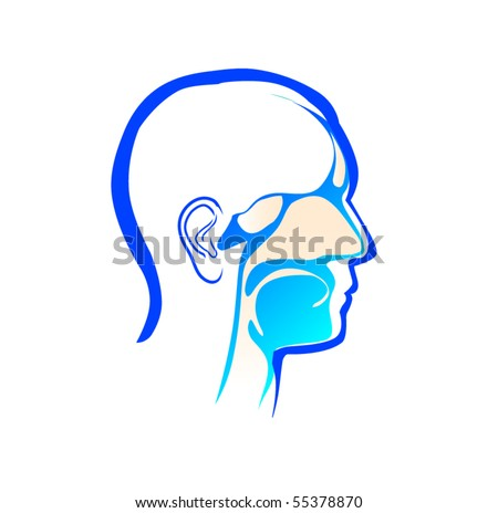 ear, nose and throat - stock vector