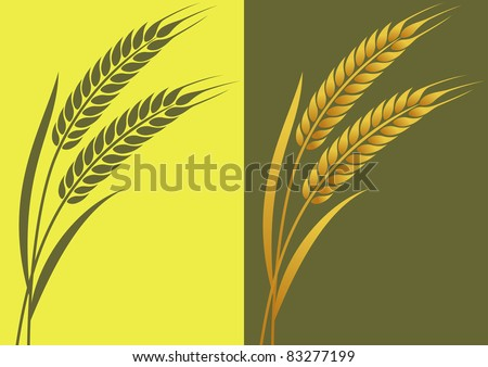 Ears of wheat in the vector on the local background - stock vector
