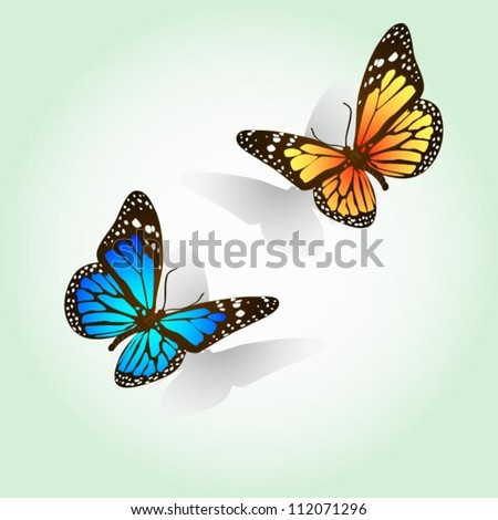 Easy editable vector butterflies - stock vector