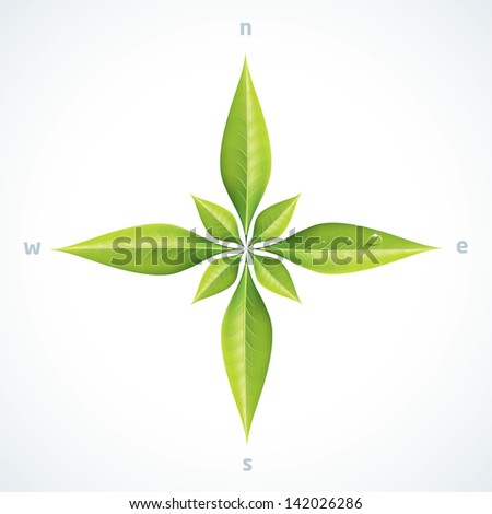 Eco green leafs compass rose - stock vector
