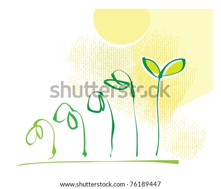 Eco motive - plant growing process (steps, simple calligraphic drawing) - stock vector