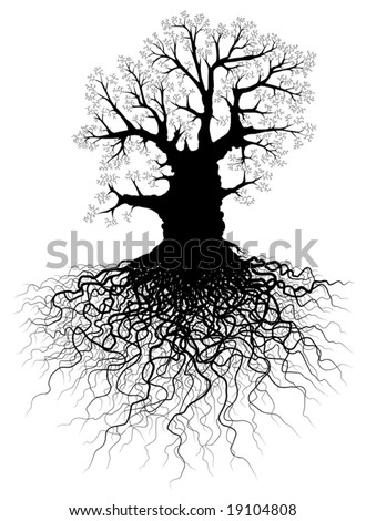 Editable vector illustration of a leafless oak tree with root system - stock vector