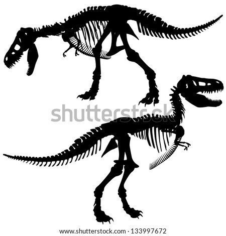 Editable vector silhouettes of the skeleton of a Tyrannosaurus rex dinosaur - stock vector