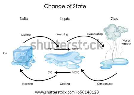 Education Chart Biology Change State Water Stock Vector