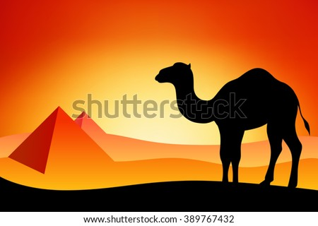 Egypt camel silhouette landscape nature sunset sunrise illustration vector - stock vector