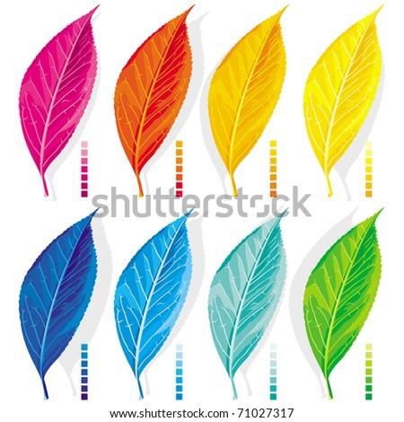 Eight leaves, painted in the colors of the spectrum - stock vector