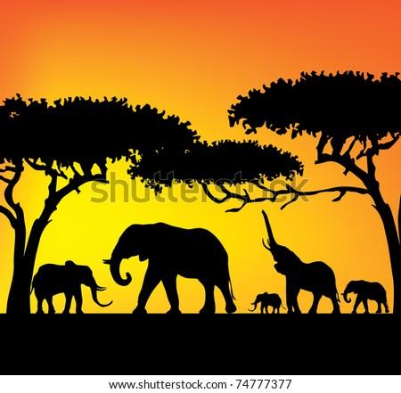 elefants - stock vector