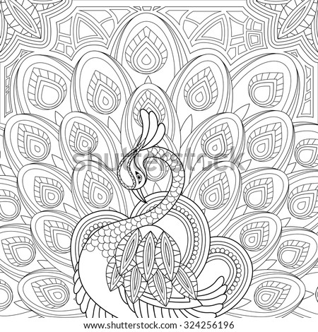 elegant peacock coloring page in exquisite style - stock vector