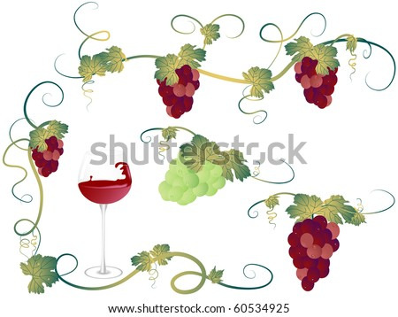 Elements for design with vine leaves and grapes - stock vector