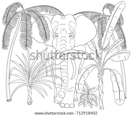 Elephant Walk Through Jungle Coloring Book Stock Vector 712918402 ...