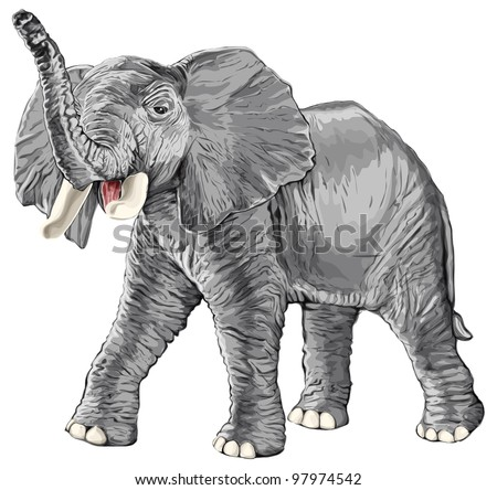 elephant with raised trunk isolated on white background / eps10