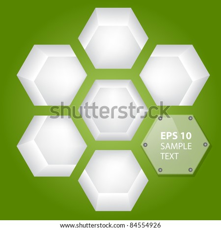 Empty shelves for exhibits in green wall - stock vector