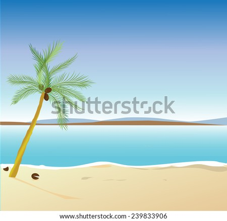 Empty tropical beach vector artwork  - stock vector