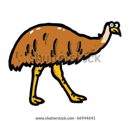 Emu vector illustration - stock vector