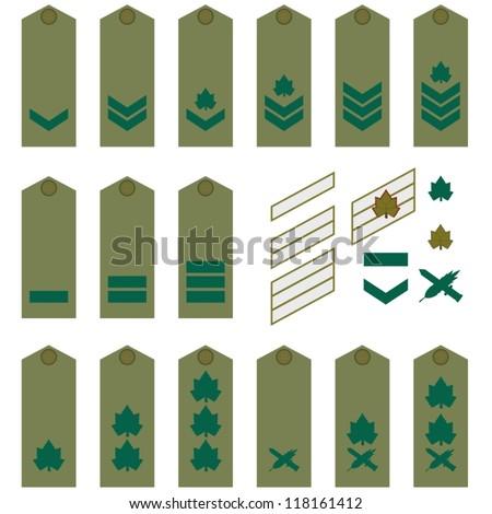 [Image: stock-vector-epaulets-military-ranks-and...161412.jpg]