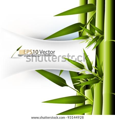 eps10 abstract vector elegant bamboo concept design - stock vector