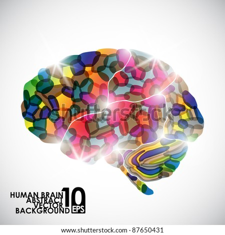 eps10, human brain, vector abstract - stock vector