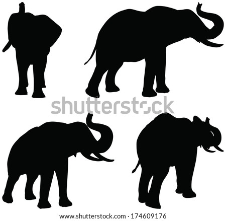Eps 10 Set of editable vector silhouettes of African elephants in trumpet poses - stock vector