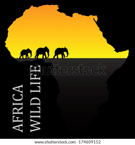 Eps 10 Set of editable vector silhouettes of African elephants in walk poses - stock vector
