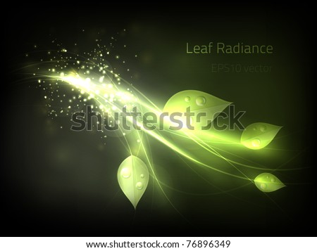 EPS10 vector leaf radiance - stock vector