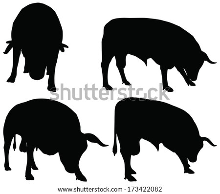 EPS 10 vector silhouettes of cattle collection in graze position - stock vector