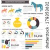 Equestrian infographic with different horse related elements and sample data. Vector file organized in groups for easy editing.   - stock vector