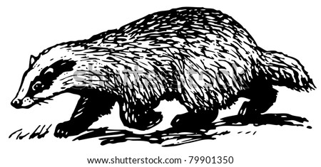 Logo Badger in addition 8444318028411872 also Stock Vector European Badger Also Known As Meles Meles Vintage Engraved Illustration Of European Badger in addition Happy Memorial Day 2011 additionally Graffiti Letters. on happy birthday wisconsin