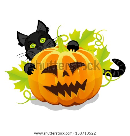 evil halloween pumpkin and black cat vector