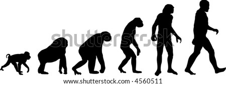 Evolution - stock vector